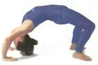 yoga-rueda.jpg