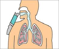 insulina-inhalada.jpg