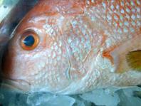 pescado-omega-3.jpg