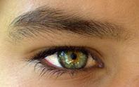 ojo-moscas-vitreo.jpg