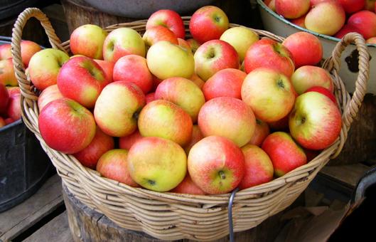 digestion lenta ansiedad manzanas