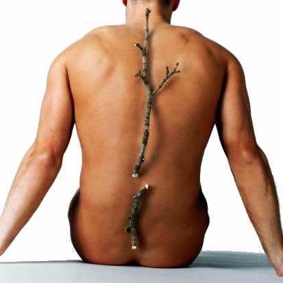prevenir osteoporosis